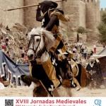 Mercado Medieval Ávila 2014